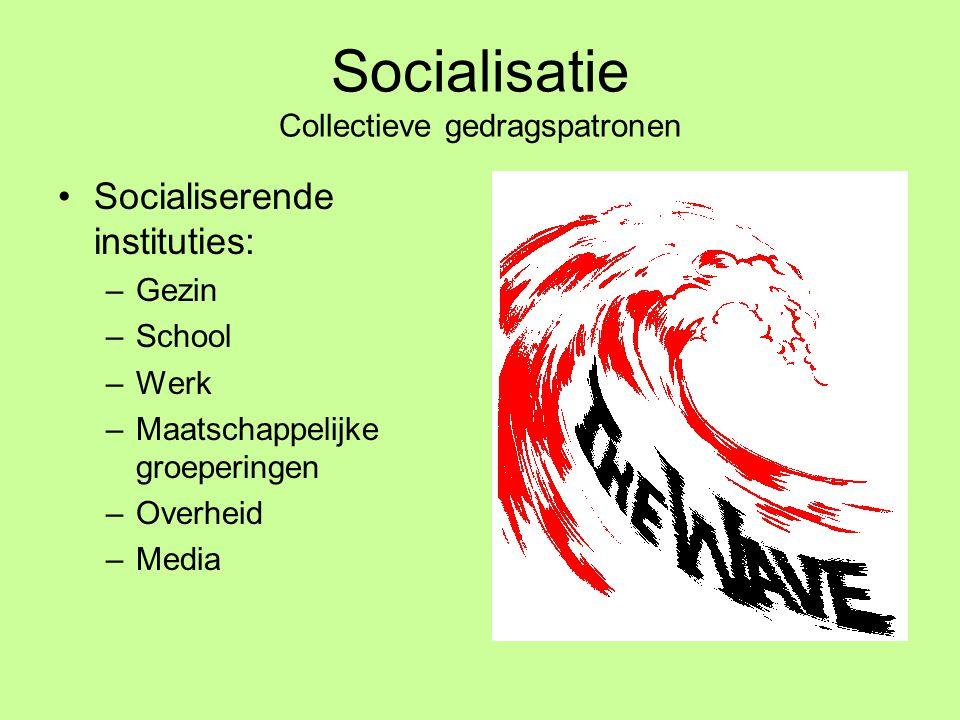 Socialisatie Collectieve gedragspatronen