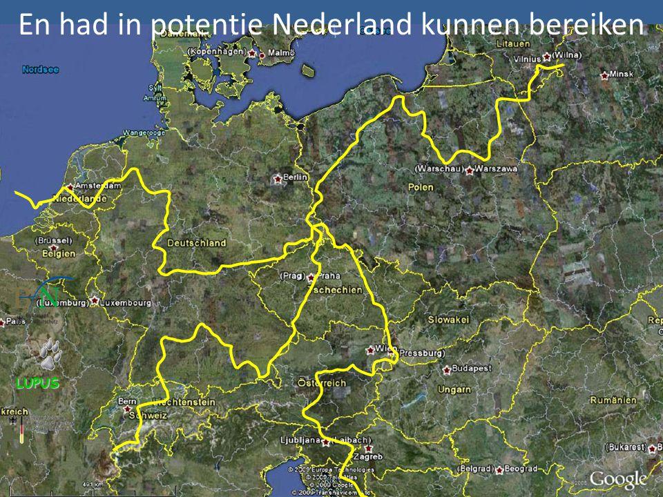 En had in potentie Nederland kunnen bereiken