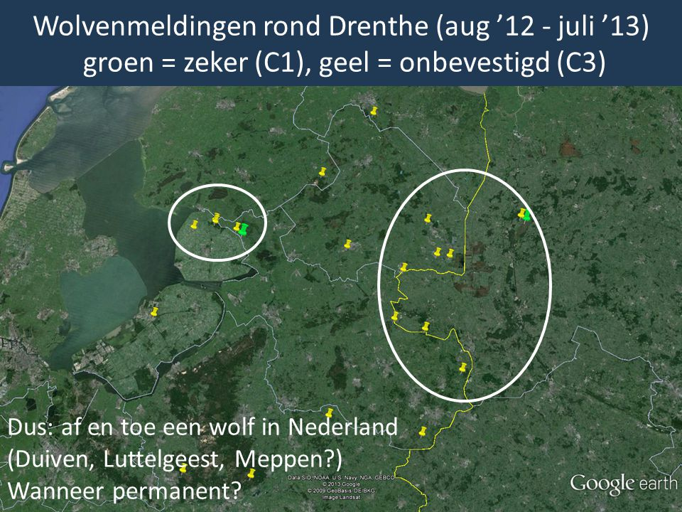 Wolvenmeldingen rond Drenthe (aug '12 - juli '13) groen = zeker (C1), geel = onbevestigd (C3)