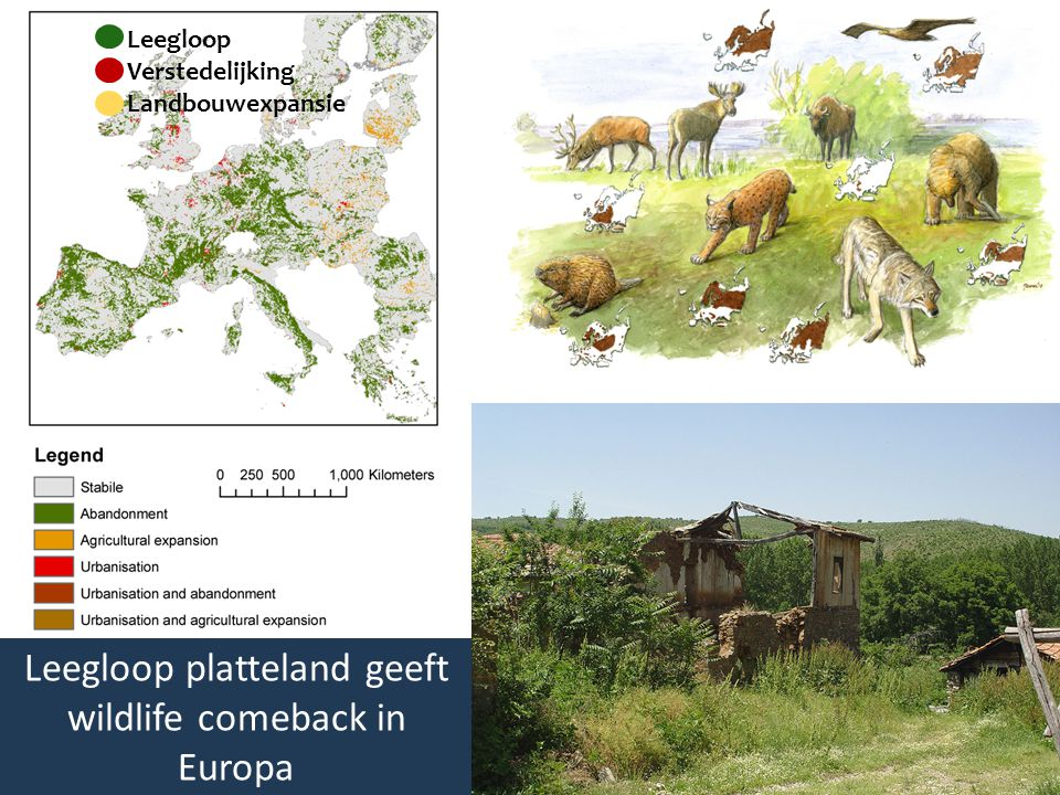 Leegloop platteland geeft wildlife comeback in Europa