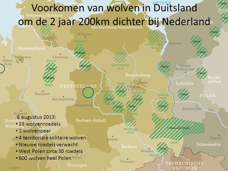 Voorkomen van wolven in Duitsland om de 2 jaar 200km dichter bij Nederland