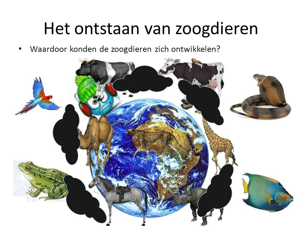 Het ontstaan van zoogdieren