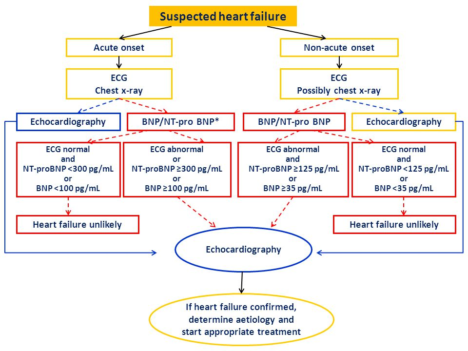 Suspected heart failure