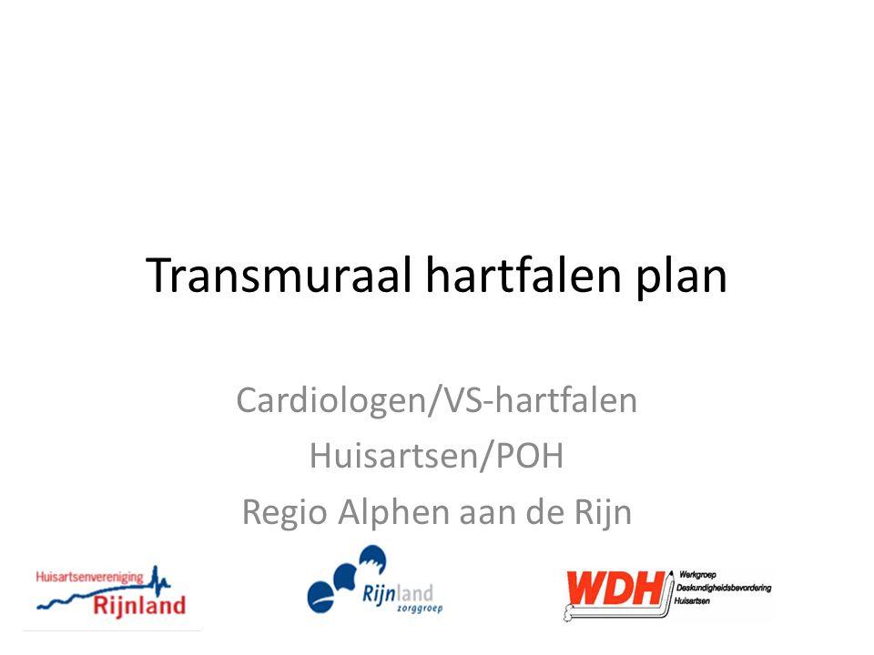 Transmuraal hartfalen plan