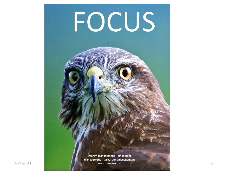 FOCUS. Interim management - financieel management - turnaroundmanagement