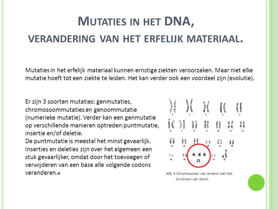 Mutaties in het DNA, verandering van het erfelijk materiaal.
