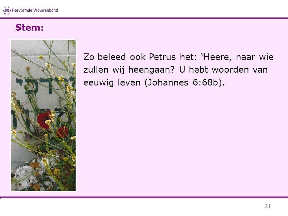Stem: Zo beleed ook Petrus het: 'Heere, naar wie zullen wij heengaan.