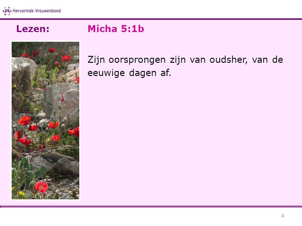 Lezen: Micha 5:1b Zijn oorsprongen zijn van oudsher, van de eeuwige dagen af.