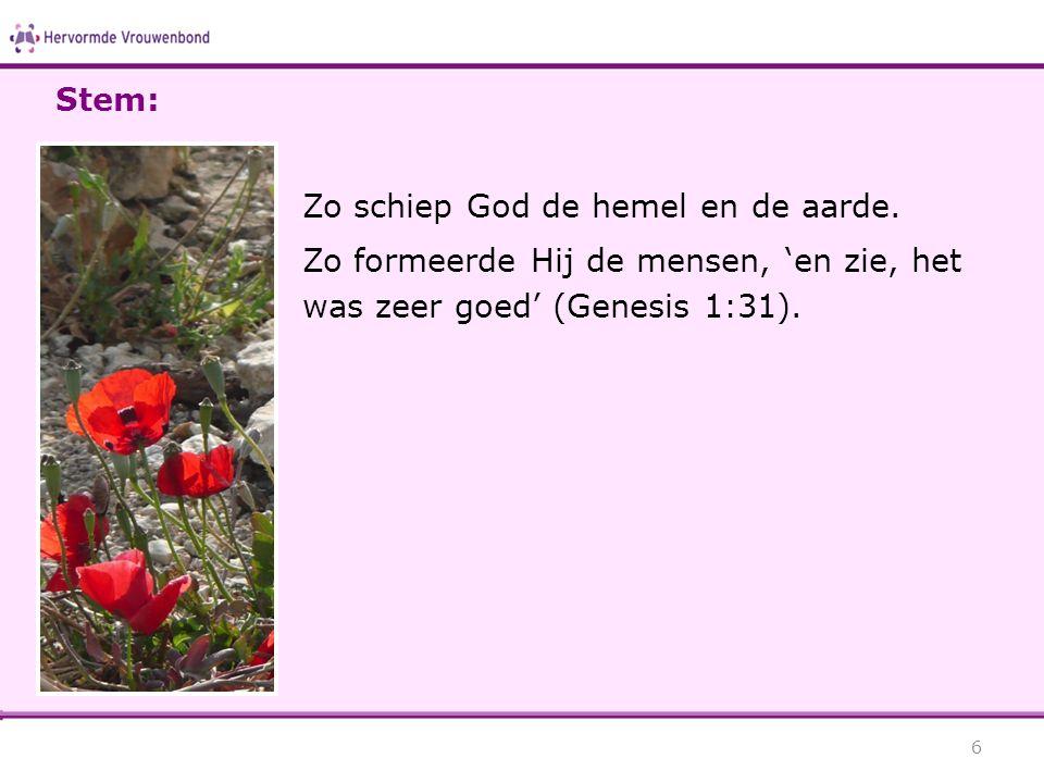 Stem: Zo schiep God de hemel en de aarde. Zo formeerde Hij de mensen, 'en zie, het was zeer goed' (Genesis 1:31).