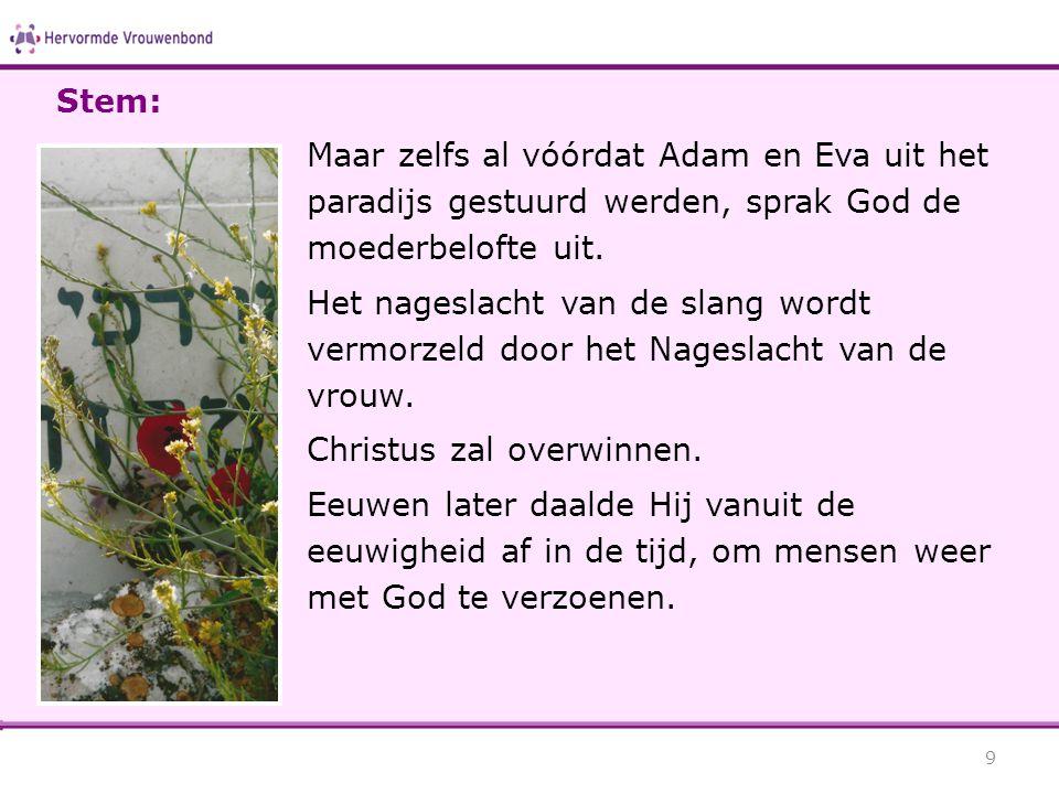 Stem: Maar zelfs al vóórdat Adam en Eva uit het paradijs gestuurd werden, sprak God de moederbelofte uit.