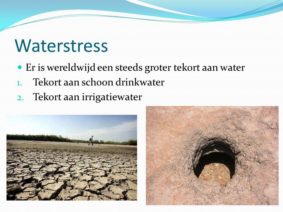 Waterstress Er is wereldwijd een steeds groter tekort aan water