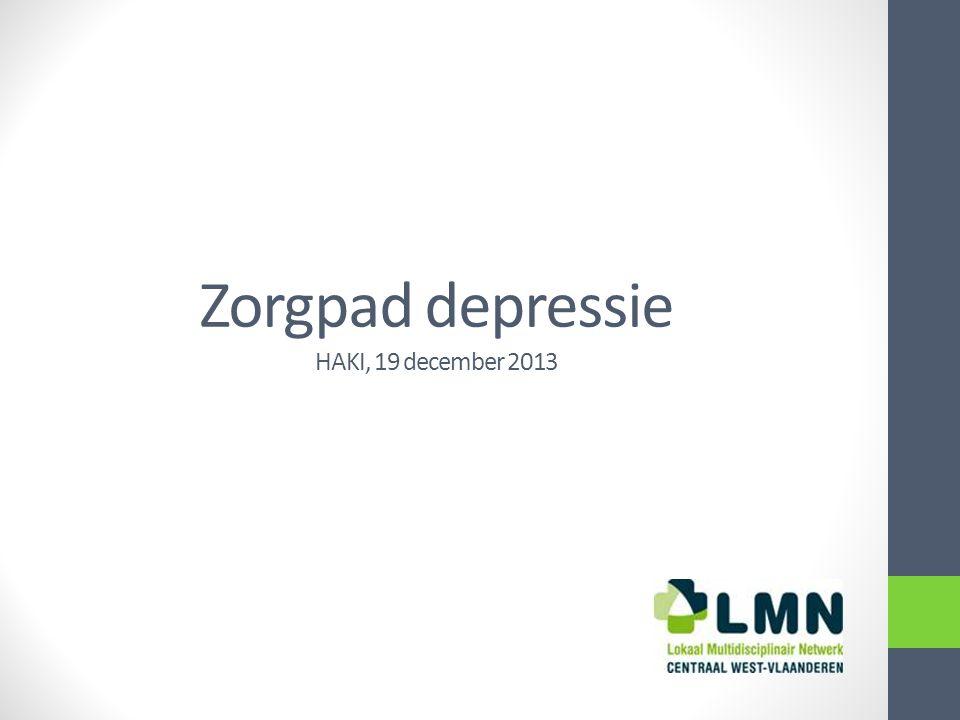 Zorgpad depressie HAKI, 19 december 2013