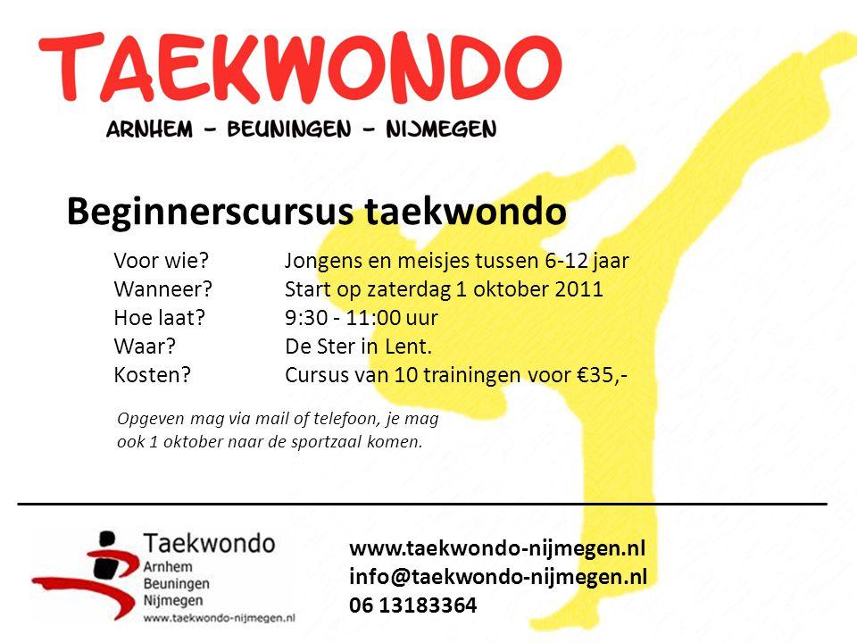 Beginnerscursus taekwondo