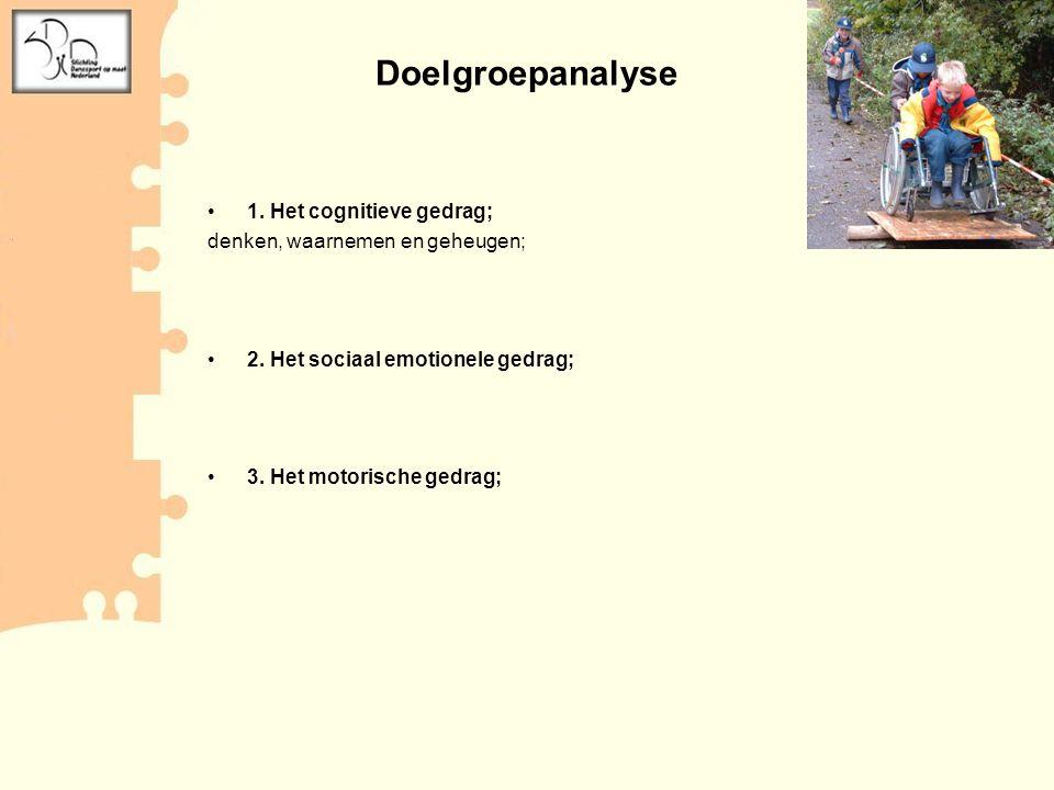 Doelgroepanalyse 1. Het cognitieve gedrag;