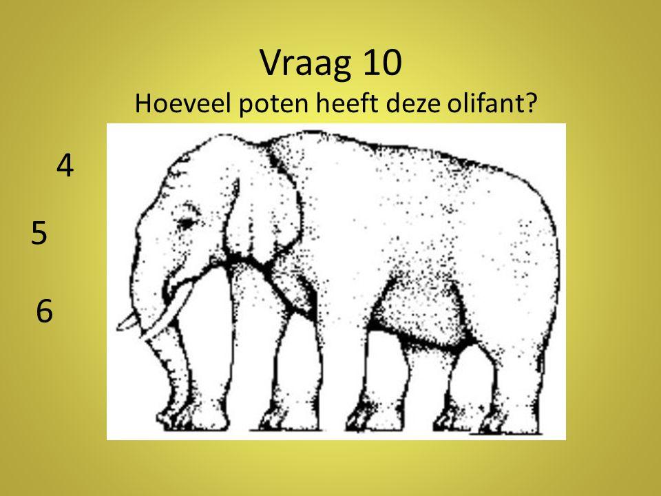 Vraag 10 Hoeveel poten heeft deze olifant 4 5 6 Antwoord: 5