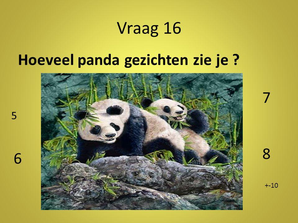 Vraag 16 Hoeveel panda gezichten zie je 7 5 Antwoord: +-10 8 6 +-10