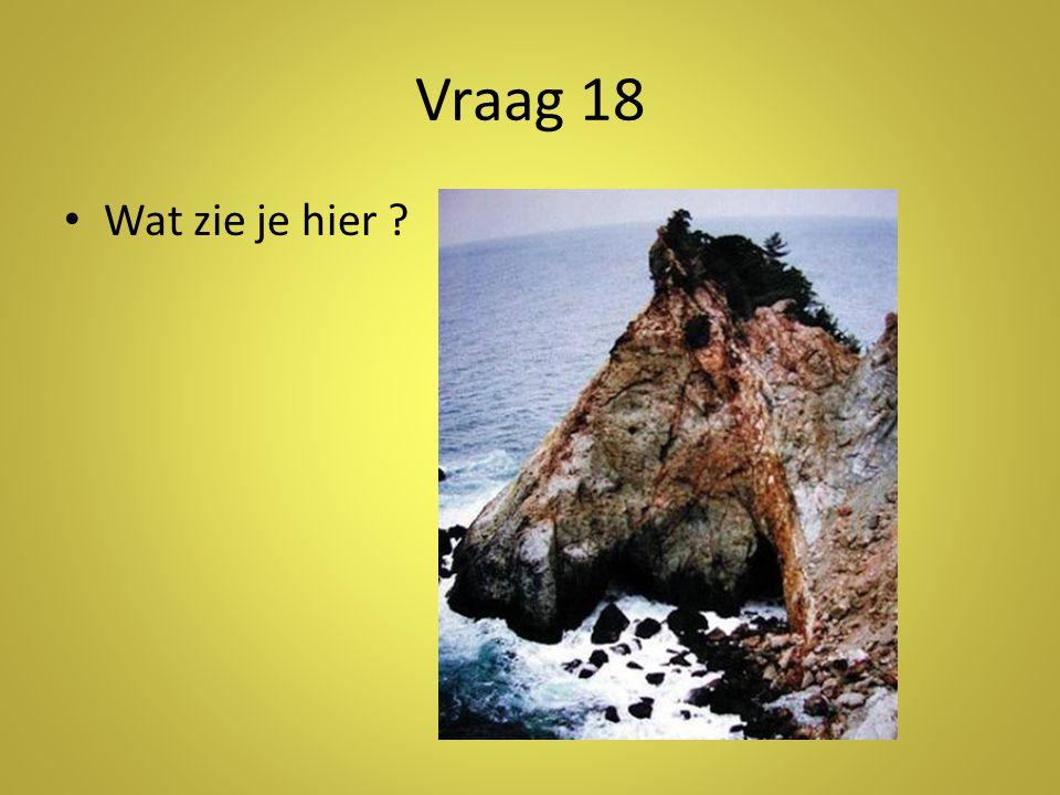 Vraag 18 Wat zie je hier Antwoord: een rots