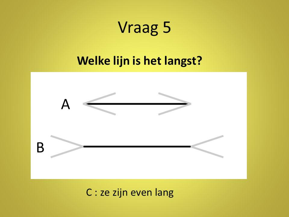 Vraag 5 A B Welke lijn is het langst C : ze zijn even lang