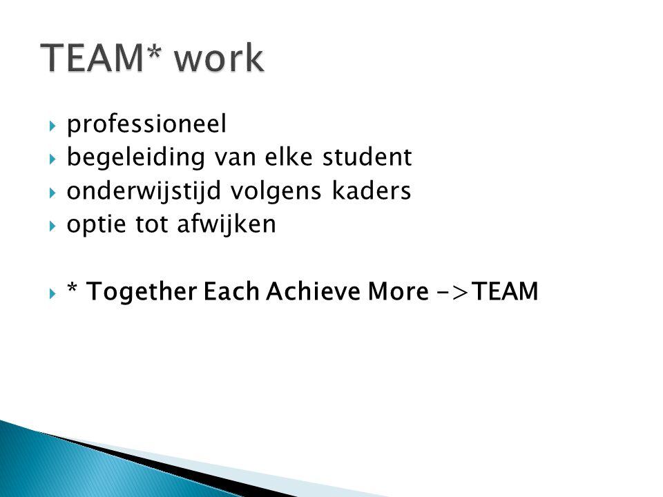 TEAM* work professioneel begeleiding van elke student