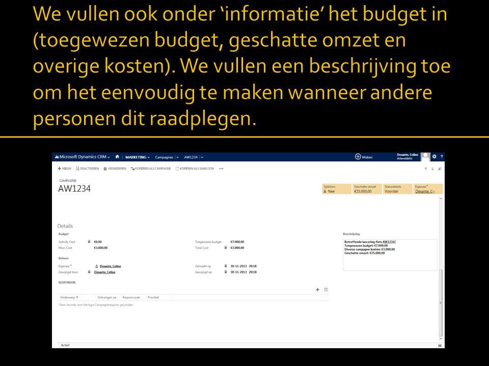 We vullen ook onder 'informatie' het budget in (toegewezen budget, geschatte omzet en overige kosten).