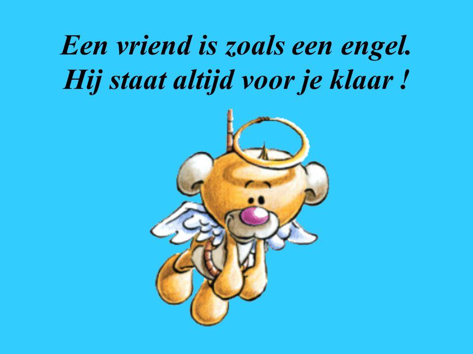 Een vriend is zoals een engel. Hij staat altijd voor je klaar !