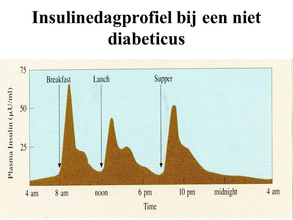 Insulinedagprofiel bij een niet diabeticus