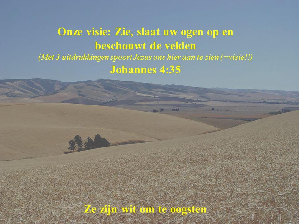 Onze visie: Zie, slaat uw ogen op en beschouwt de velden