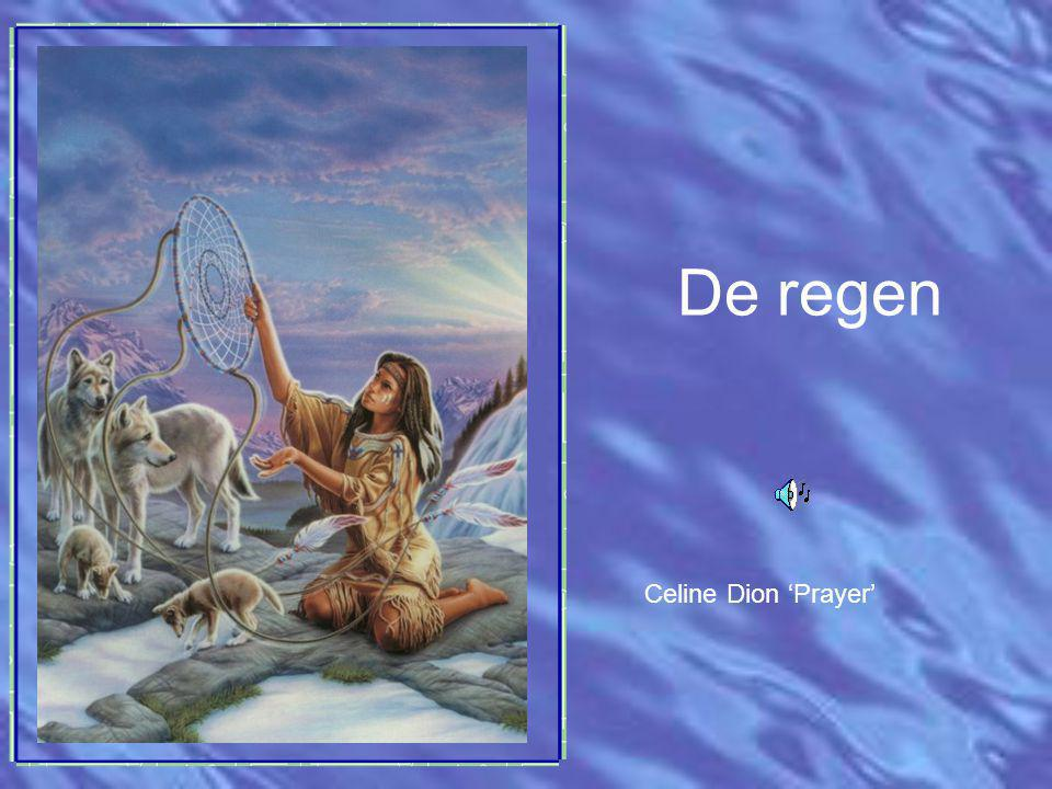 De regen Celine Dion 'Prayer'