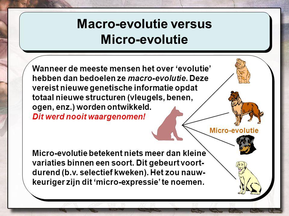 Macro-evolutie versus