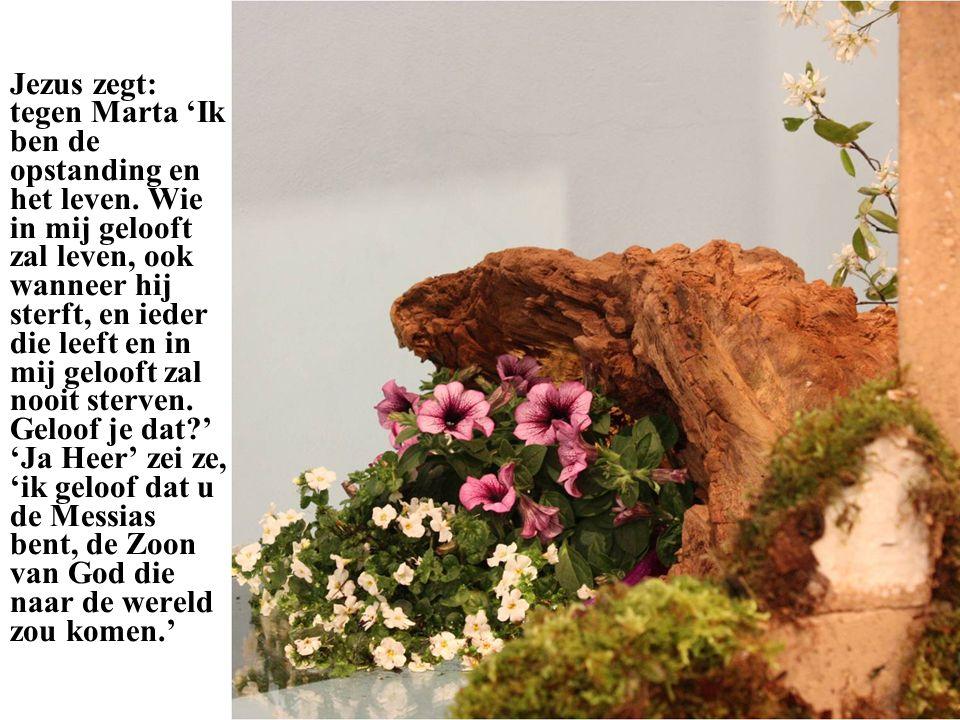 Jezus zegt: tegen Marta 'Ik ben de opstanding en het leven