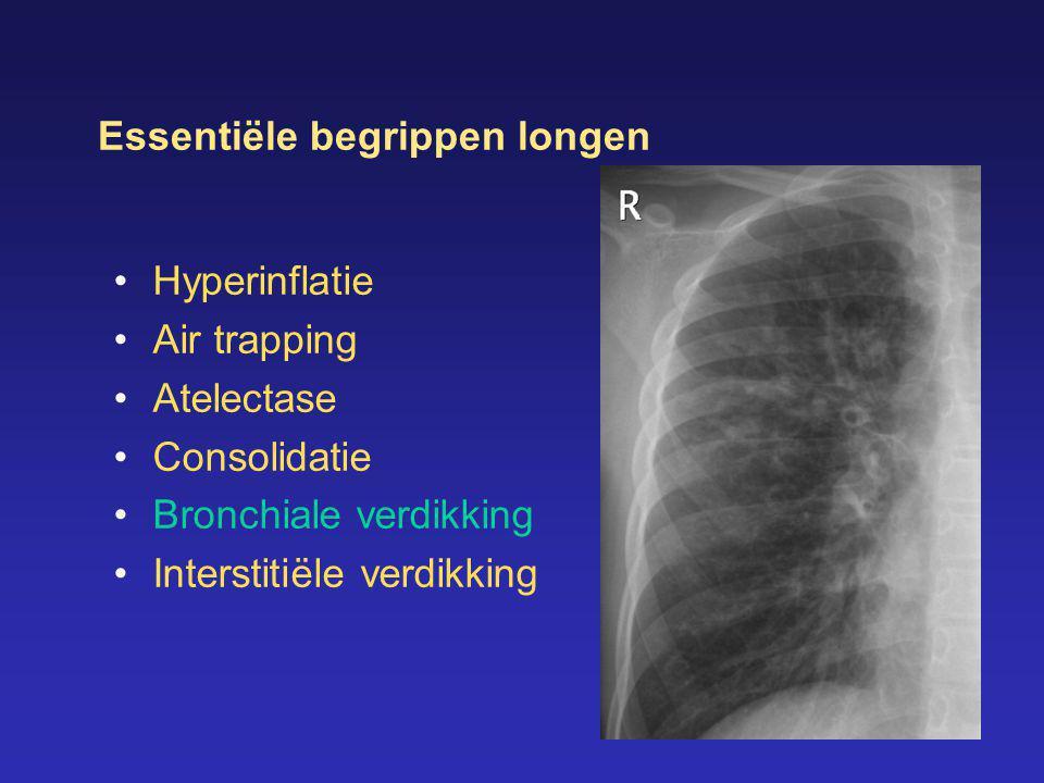 Essentiële begrippen longen
