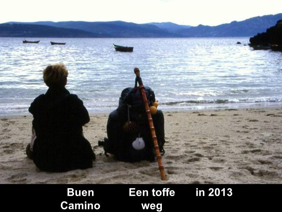 Buen Camino Een toffe weg in 2013