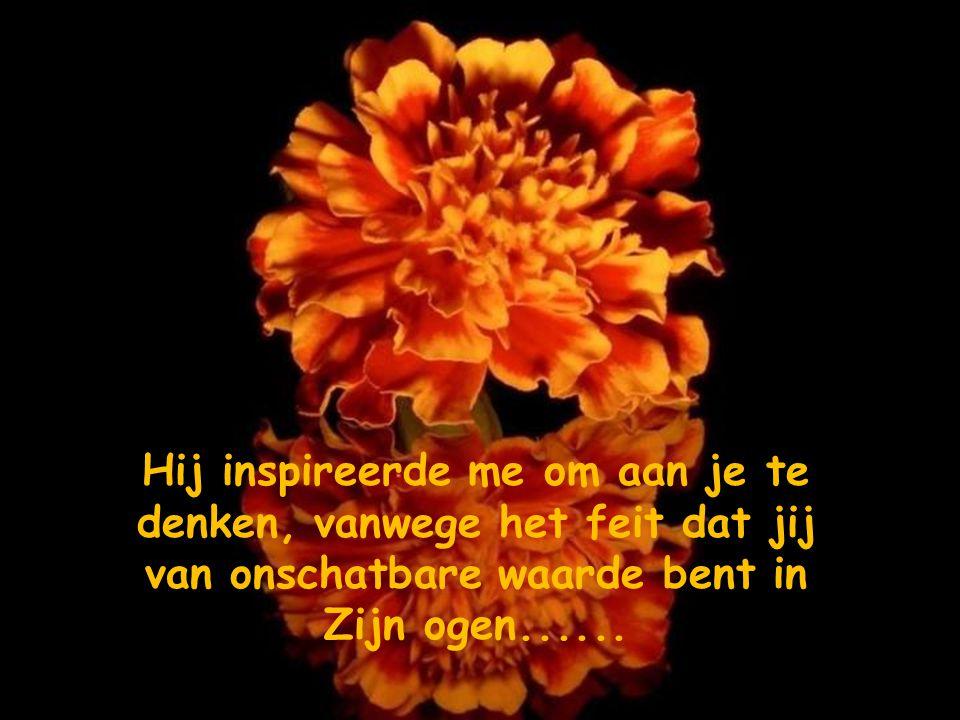 Hij inspireerde me om aan je te denken, vanwege het feit dat jij van onschatbare waarde bent in Zijn ogen......