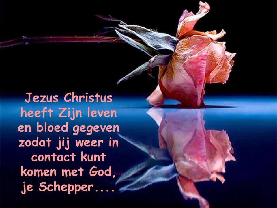 Jezus Christus heeft Zijn leven en bloed gegeven zodat jij weer in contact kunt komen met God, je Schepper....