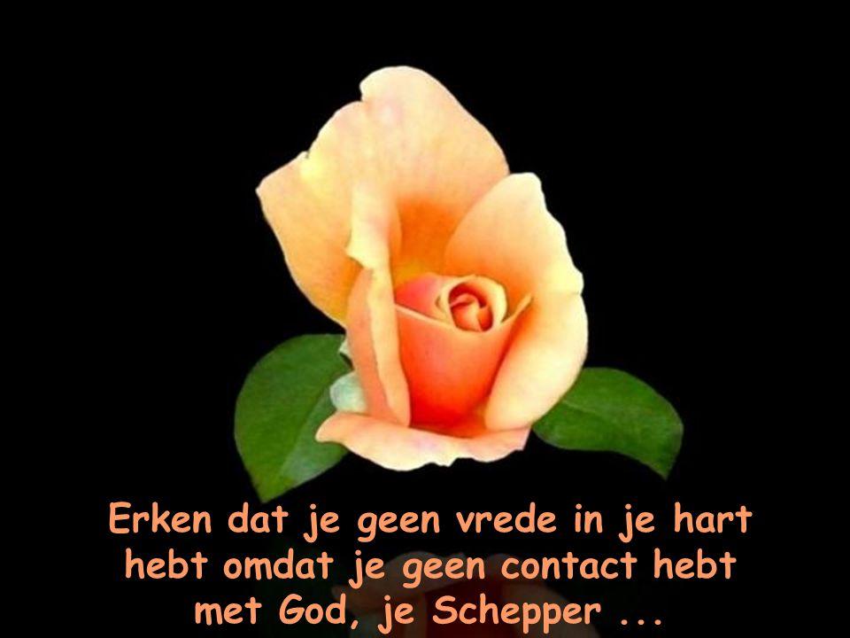 Erken dat je geen vrede in je hart hebt omdat je geen contact hebt met God, je Schepper ...