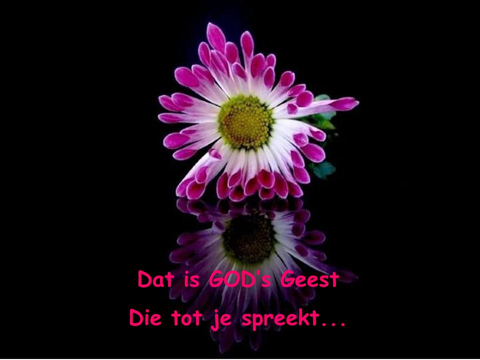 Dat is GOD's Geest Die tot je spreekt...