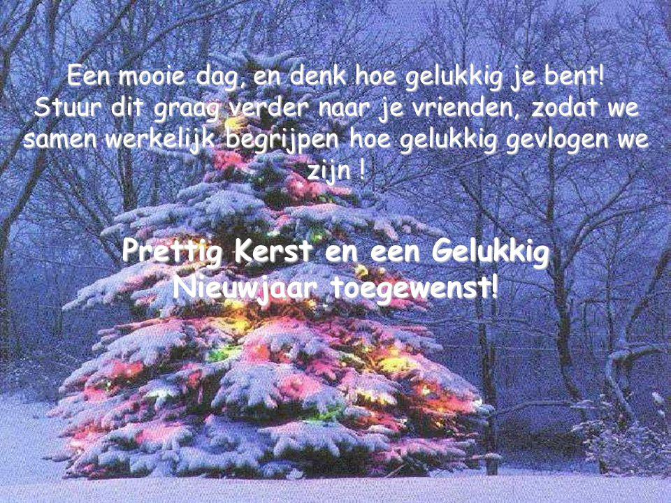 Prettig Kerst en een Gelukkig Nieuwjaar toegewenst!