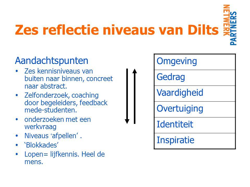 Zes reflectie niveaus van Dilts