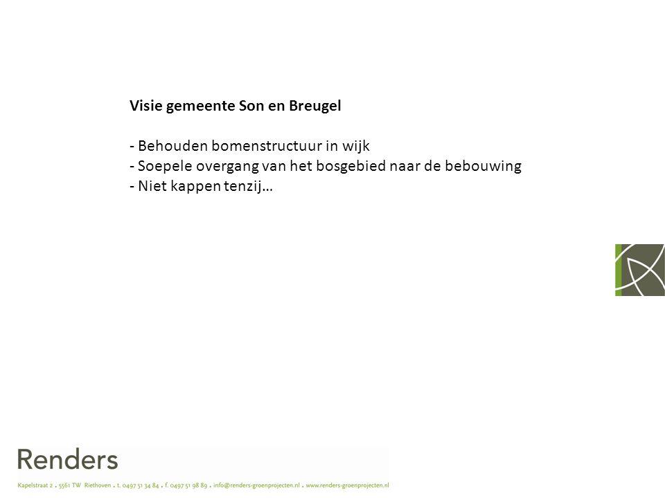 Visie gemeente Son en Breugel