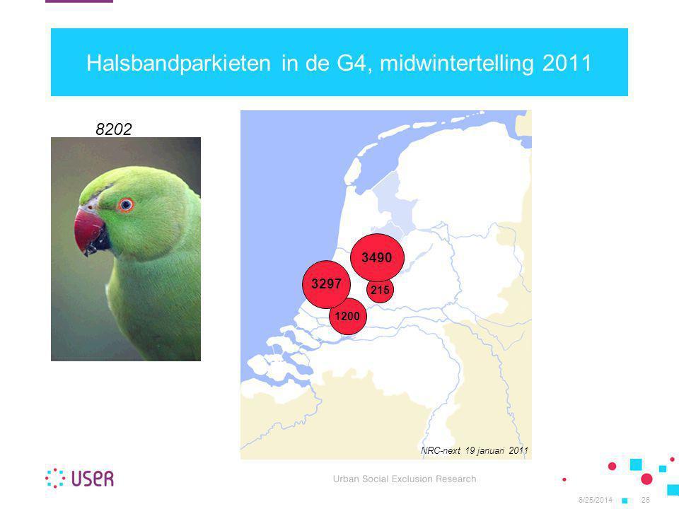 Halsbandparkieten in de G4, midwintertelling 2011