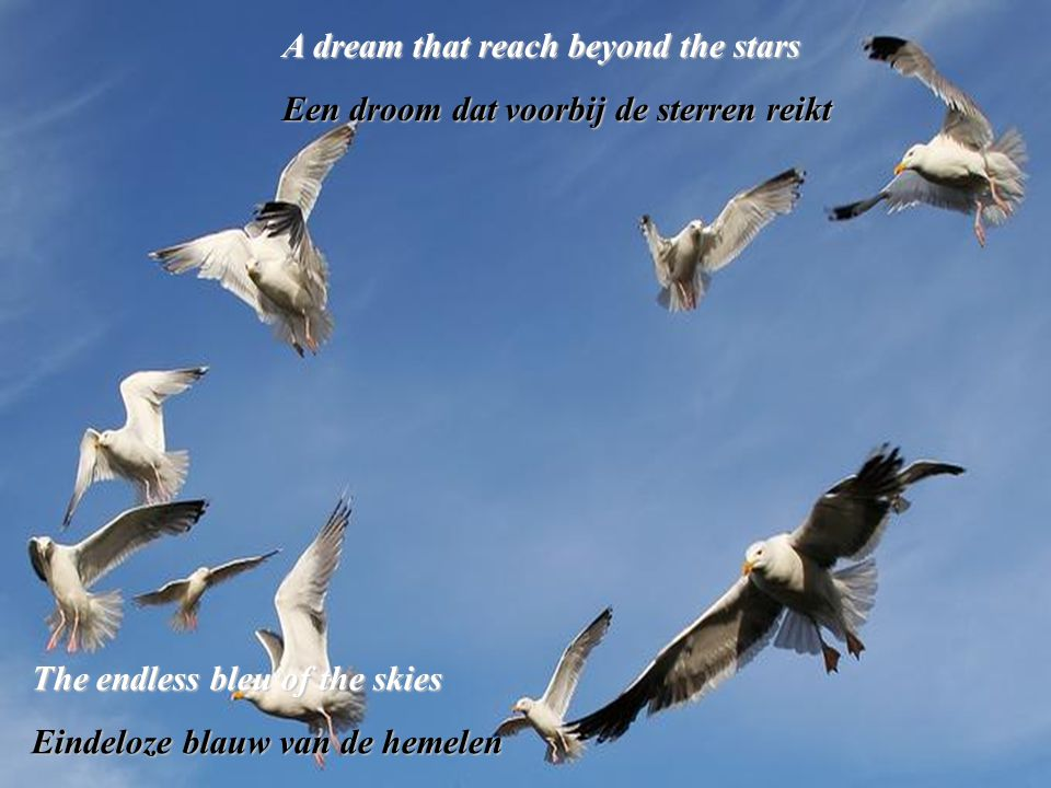 A dream that reach beyond the stars