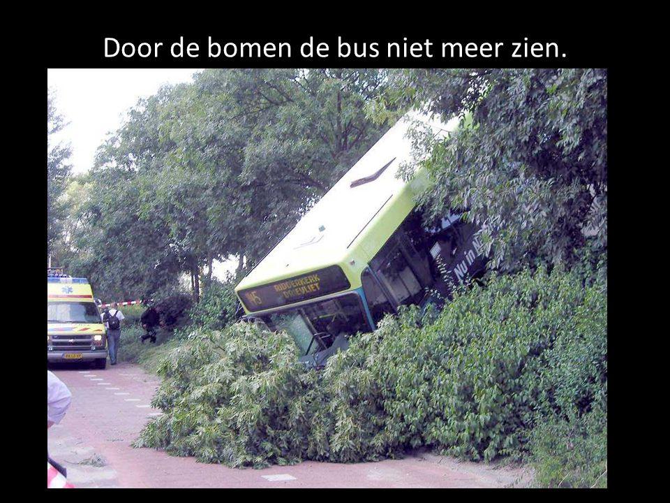 Door de bomen de bus niet meer zien.