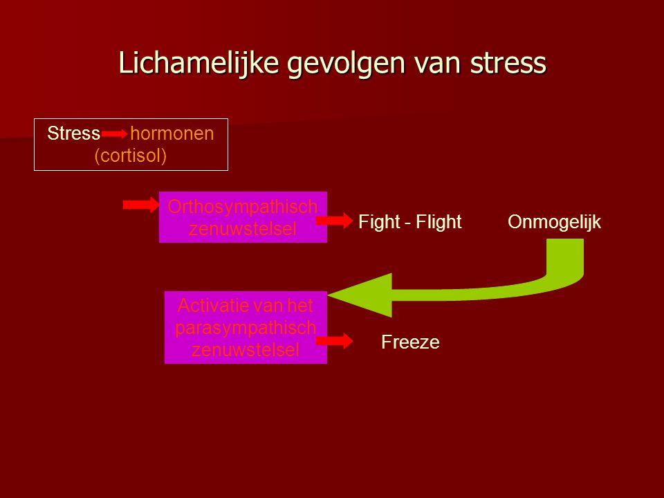 Lichamelijke gevolgen van stress