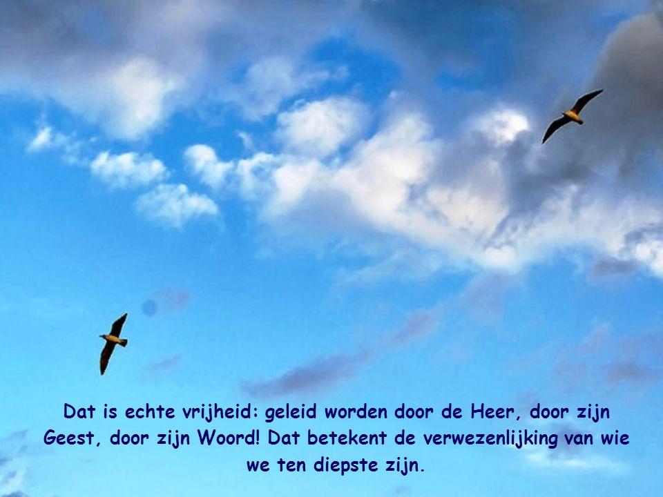 Dat is echte vrijheid: geleid worden door de Heer, door zijn Geest, door zijn Woord.