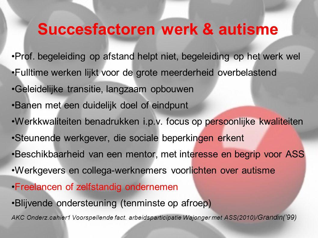 Succesfactoren werk & autisme