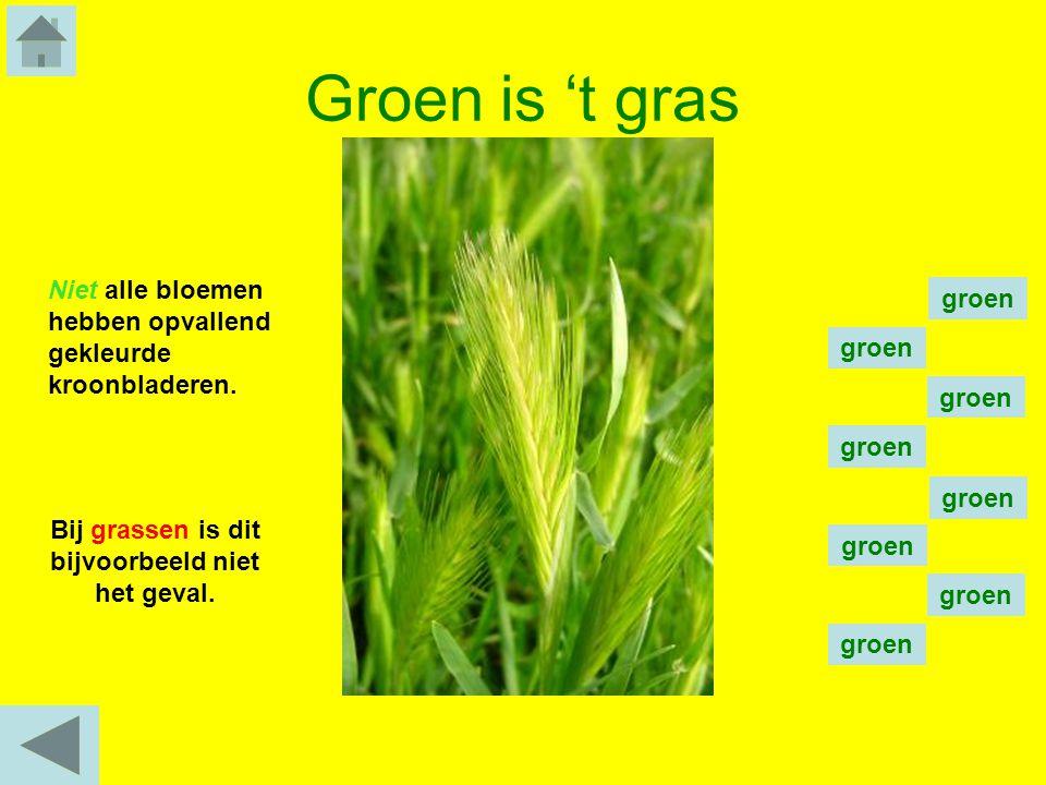 Bij grassen is dit bijvoorbeeld niet het geval.