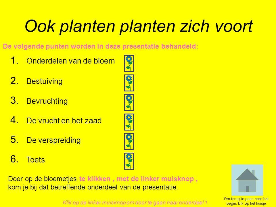 Ook planten planten zich voort