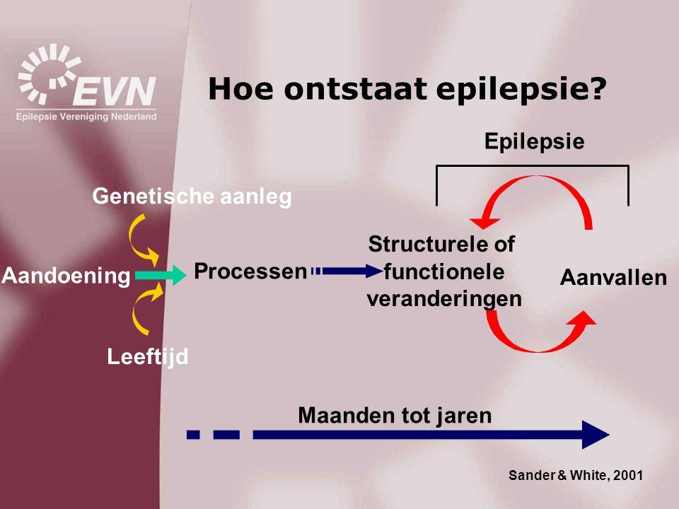 Hoe ontstaat epilepsie