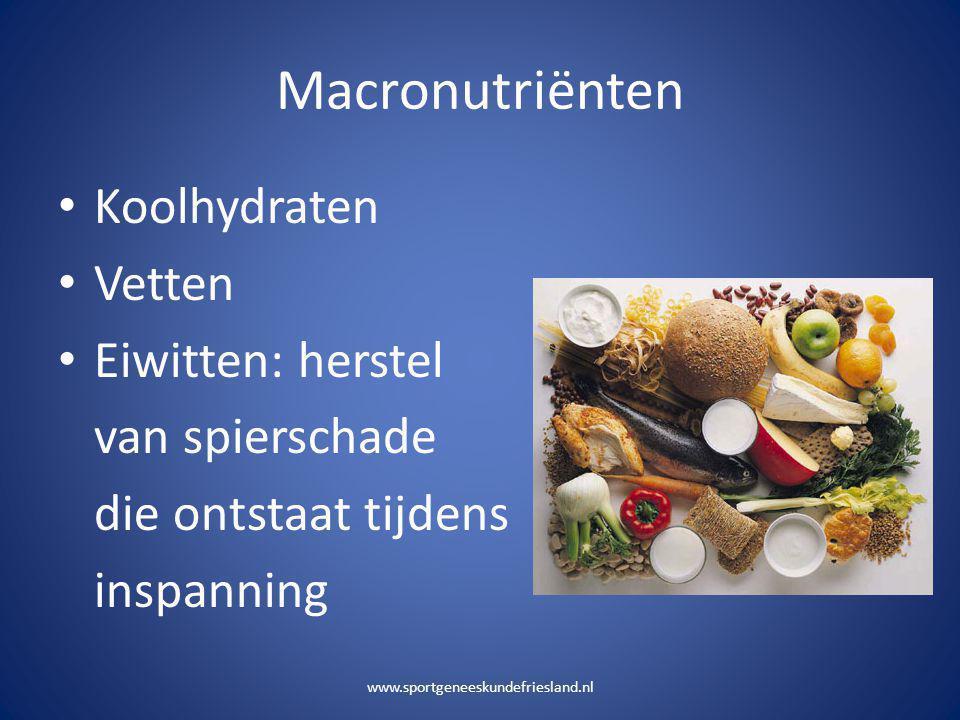 Macronutriënten Koolhydraten Vetten Eiwitten: herstel van spierschade