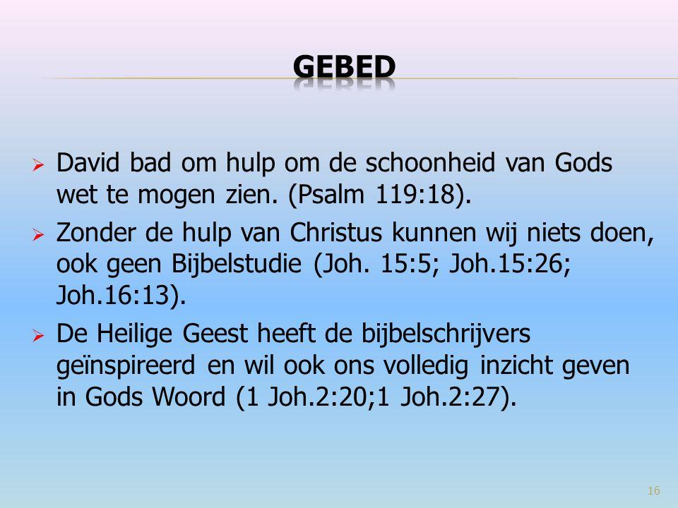 GEBED David bad om hulp om de schoonheid van Gods wet te mogen zien. (Psalm 119:18).